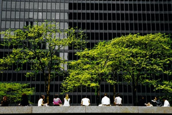workplace sustainability carbon context